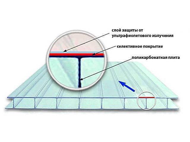 teplica-iz-polikarbonata-6.jpg